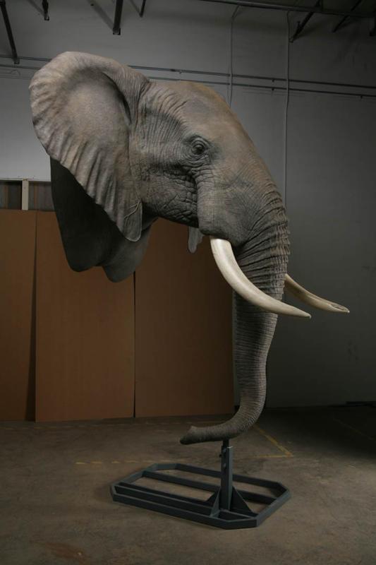 Mounted Elephant, Elephant Taxidermy