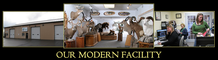 Our Taxidermy Facility - Located in Middletown, CT