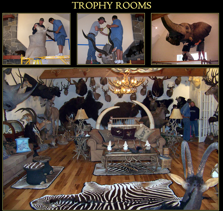 Trophy room services at northeast taxidermy studios for Big game room